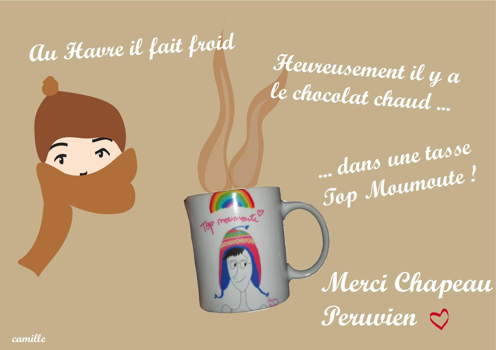 merci-chapichapo-peruvien1