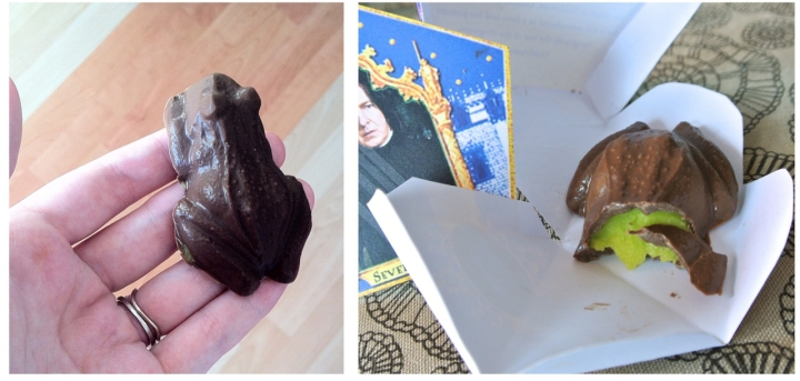 chocogrenouilles chocolate frogs - Halloween Potter Party