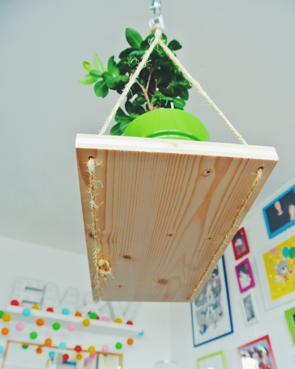 Castorama 18h39 DIY suspension plante